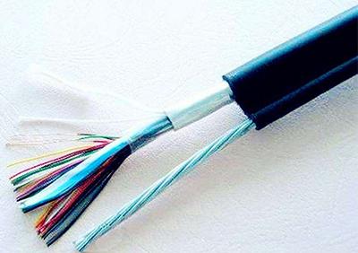 氟塑料耐高温电耐油软电缆