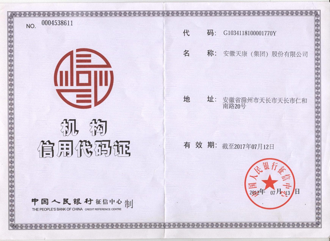 集团公司机构信用代码证